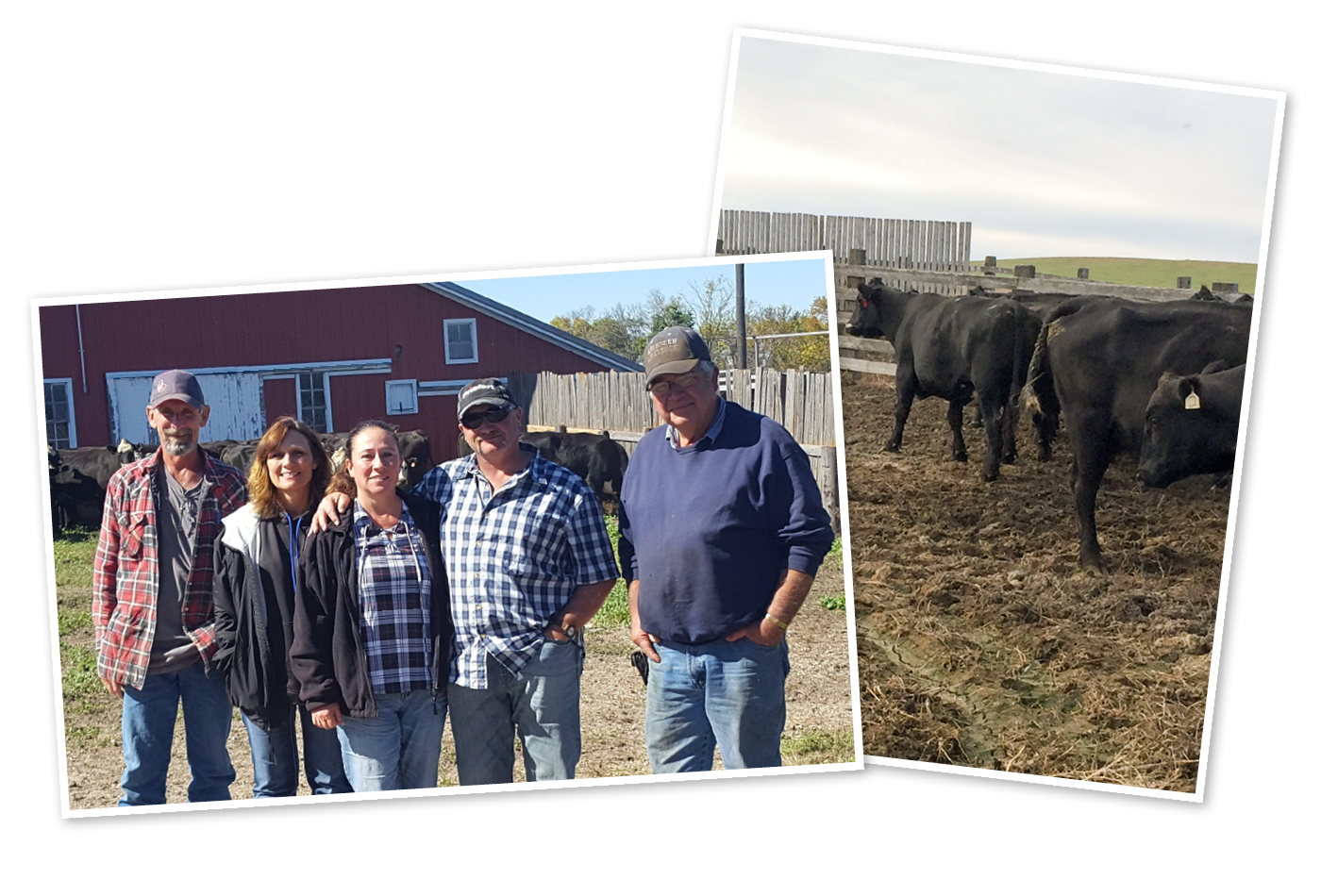 Mark and Janet Dassinger and neighbors Shari and Lee Stein stand with Jim Henningsen with his barn in the background