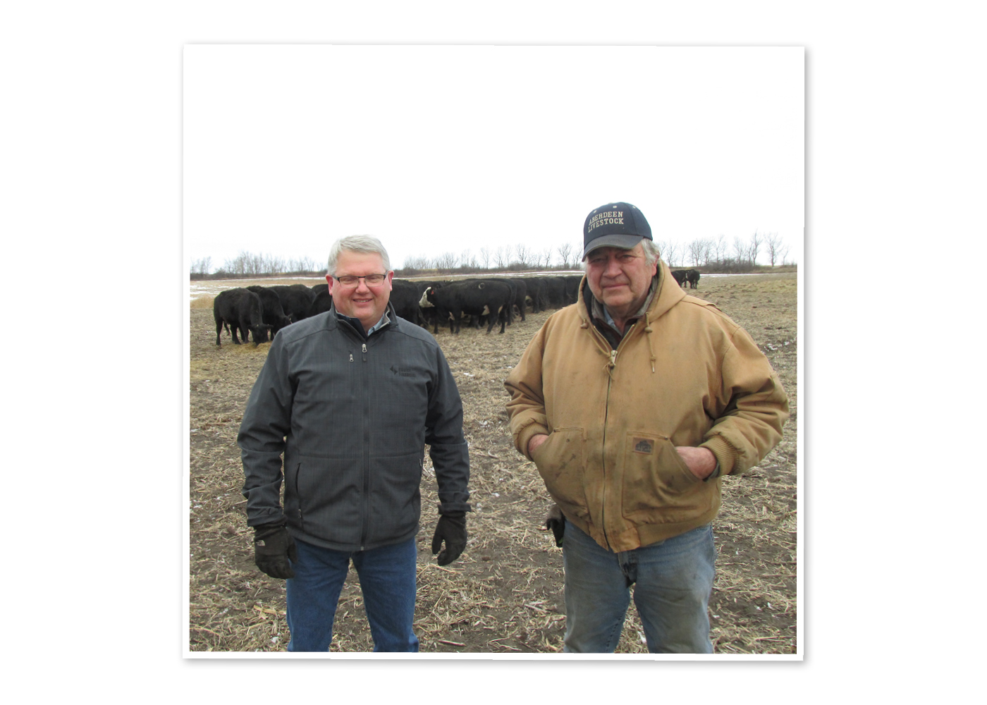 (left to right) Jeff Petersen and Jim Henningsen stand together with cattle behind them